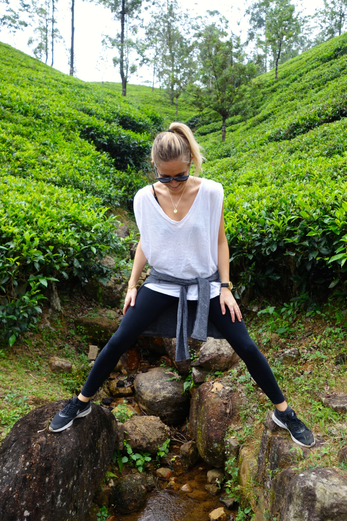 FMN | Tea Trails  - 021