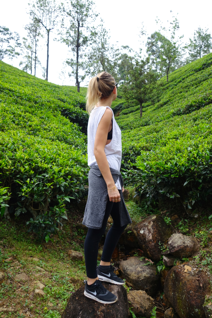 FMN | Tea Trails  - 024