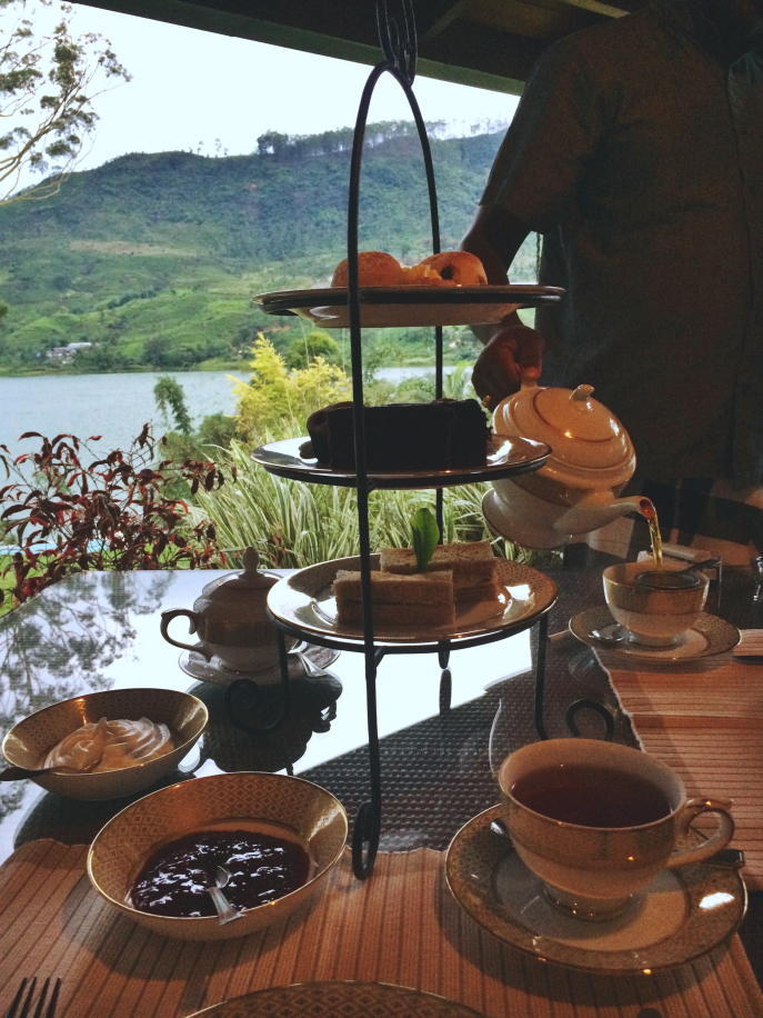 FMN | Tea Trails  - 078