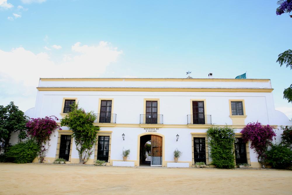 hacienda san rafael: