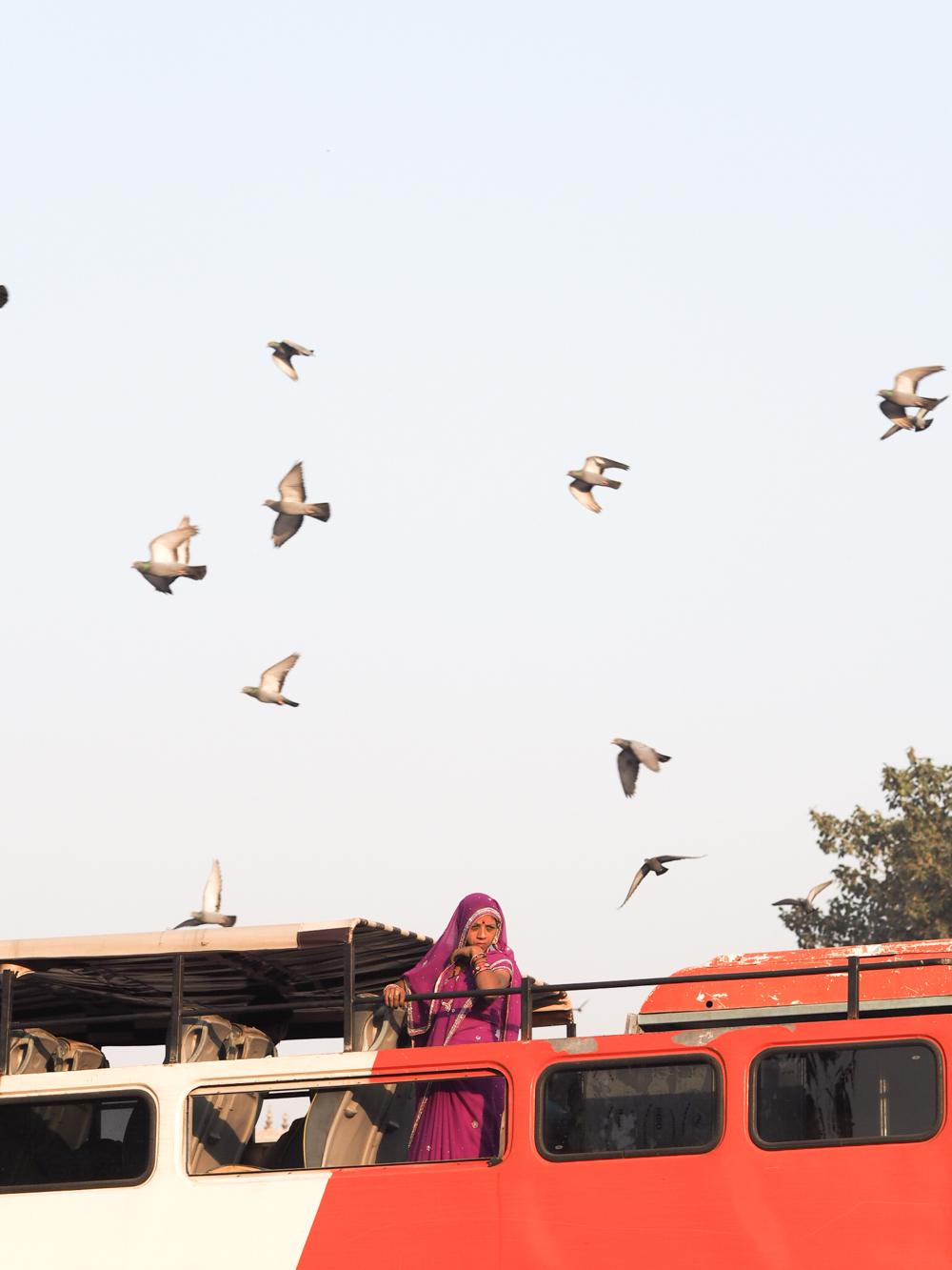 olympus camera in india