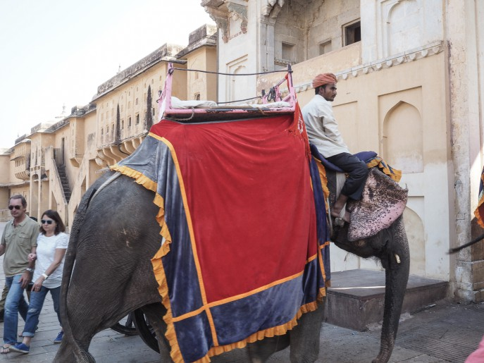 FMN-Rajasthan-Roadtrip-Jaipur-2