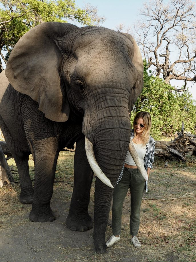 lucy-williams-fmn_botswana-safari-abu-camp-39