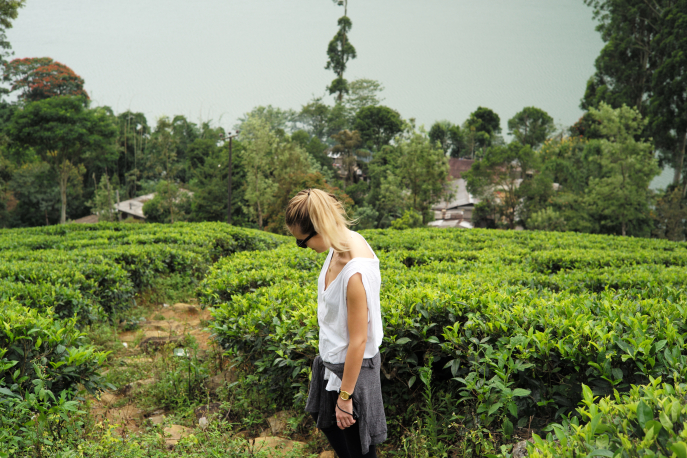 FMN | Tea Trails  - 008