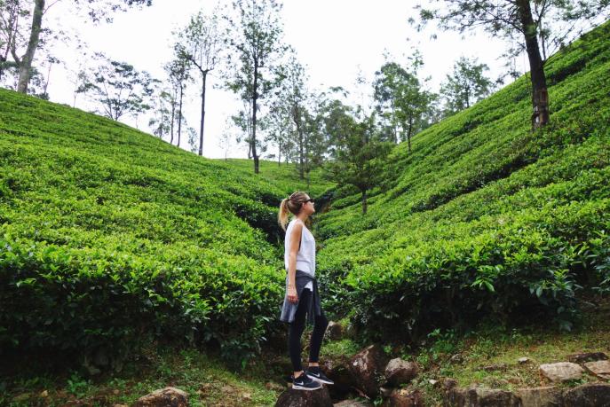 FMN | Tea Trails  - 040