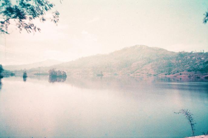 FMN | Tea Trails  - 098