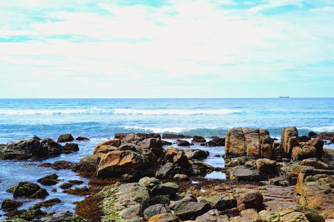 FMN | Cape Weligama - 60