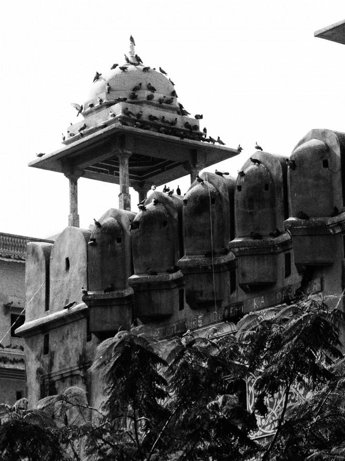 FMN-Rajasthan-Roadtrip-Jaipur-11