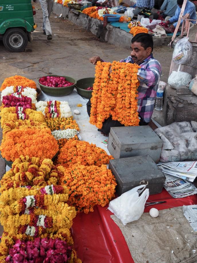 FMN-Rajasthan-Roadtrip-Jaipur-41