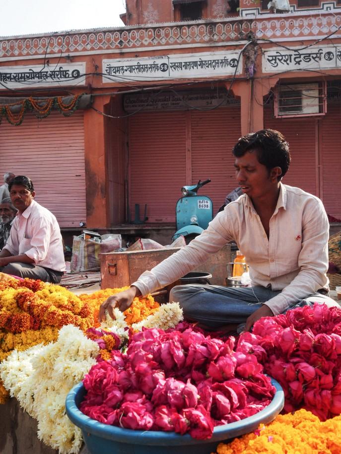 FMN-Rajasthan-Roadtrip-Jaipur-50