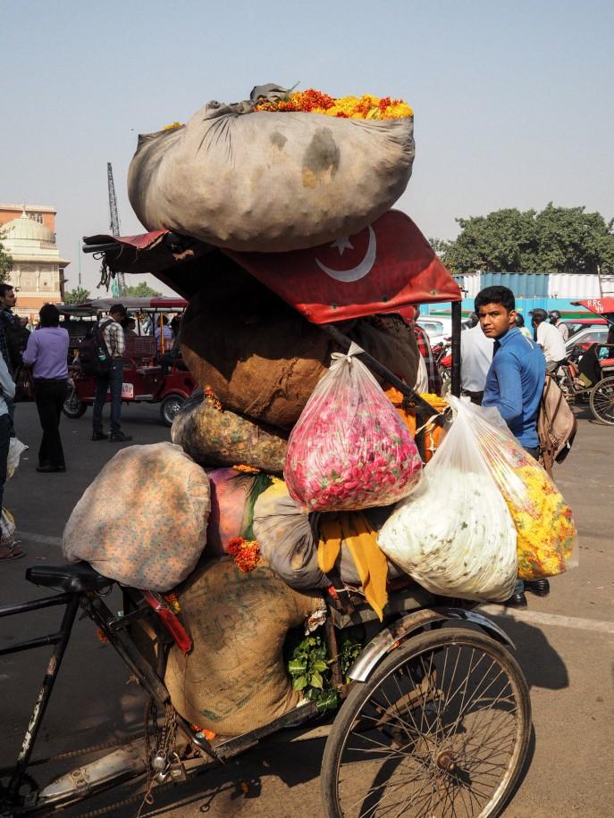 FMN-Rajasthan-Roadtrip-Jaipur-51