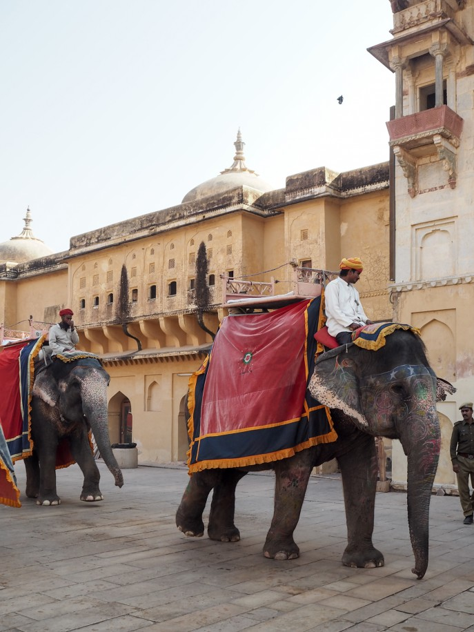 FMN-Rajasthan-Roadtrip-Jaipur-9