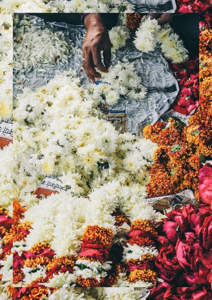 India collage 2