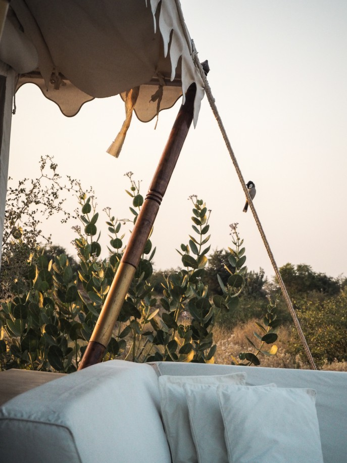 Fashion Me Now | Rajasthan Road Trip | Jaisalmer & the Desert_-11