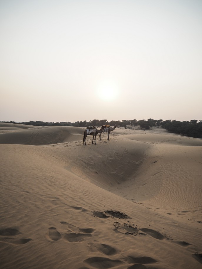 Fashion Me Now | Rajasthan Road Trip | Jaisalmer & the Desert_-123
