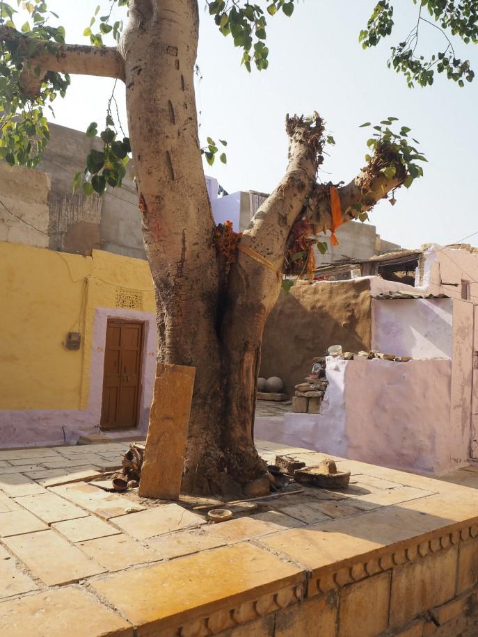 Fashion Me Now | Rajasthan Road Trip | Jaisalmer & the Desert_-37