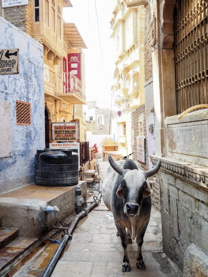 Fashion Me Now | Rajasthan Road Trip | Jaisalmer & the Desert_-53