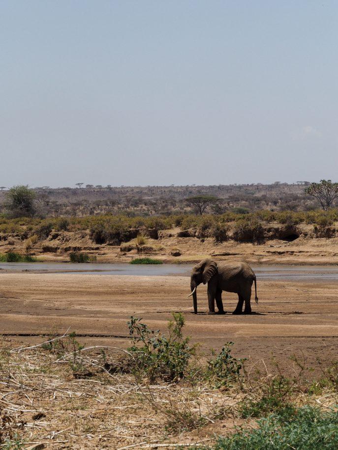 fashion-me-now-kenya-safari-travel-diary-62