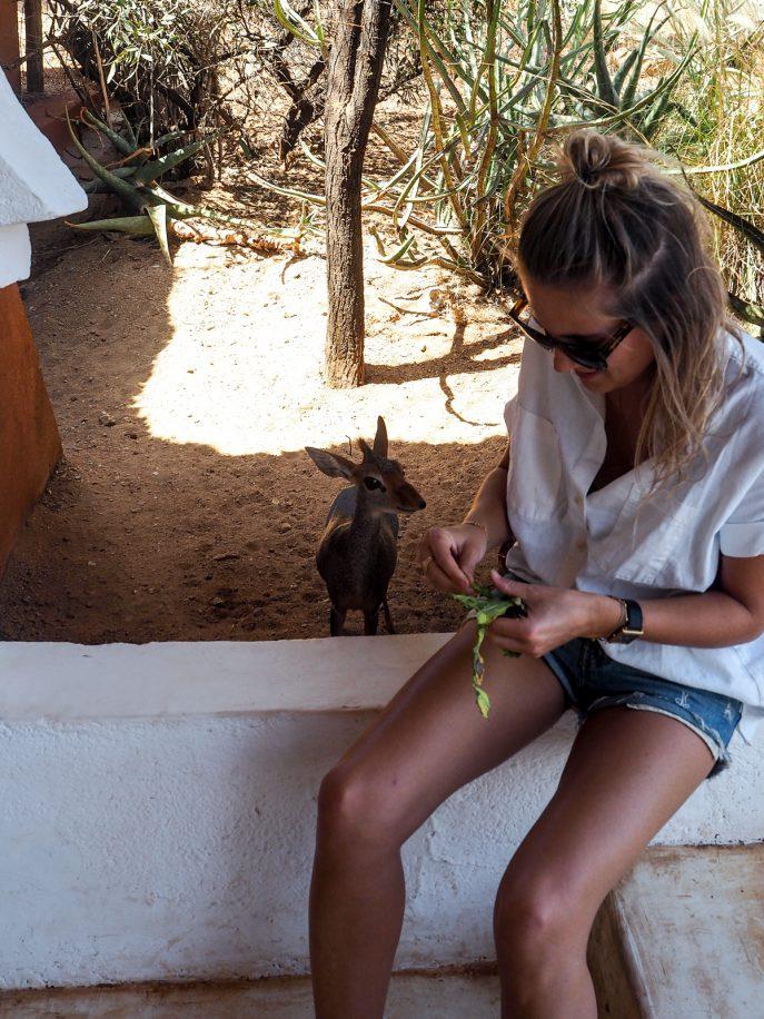 fashion-me-now-kenya-safari-travel-diary-74
