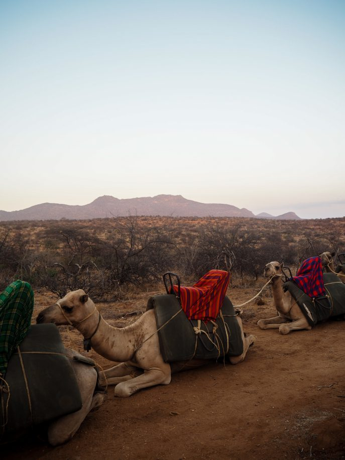 fashion-me-now-kenya-safari-travel-diary-81