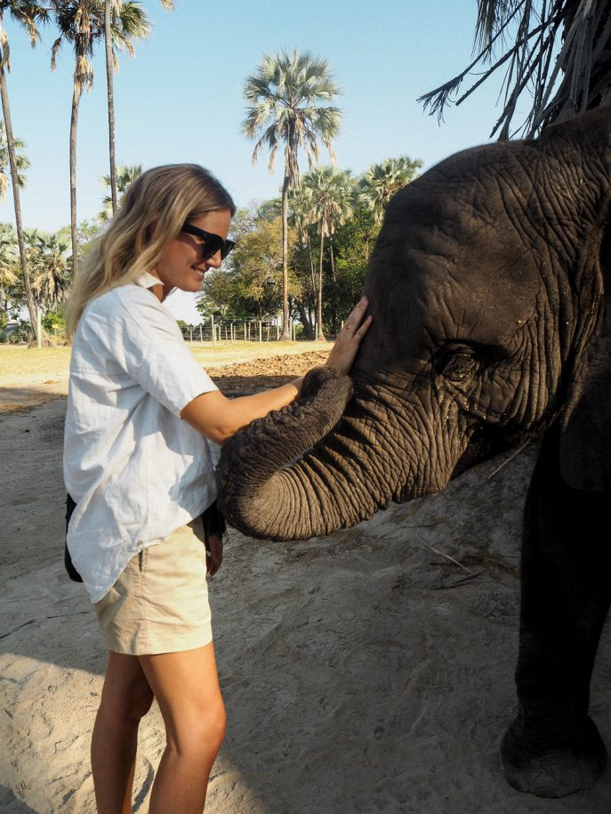 lucy-williams-fmn_botswana-safari-abu-camp-7