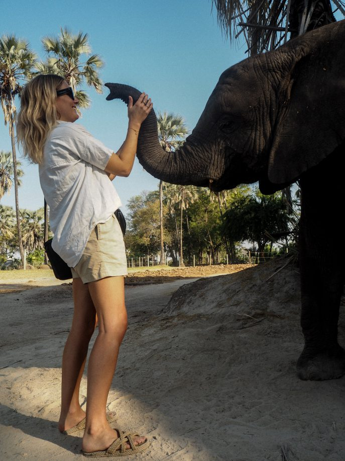 lucy-williams-fmn_botswana-safari-abu-camp-8